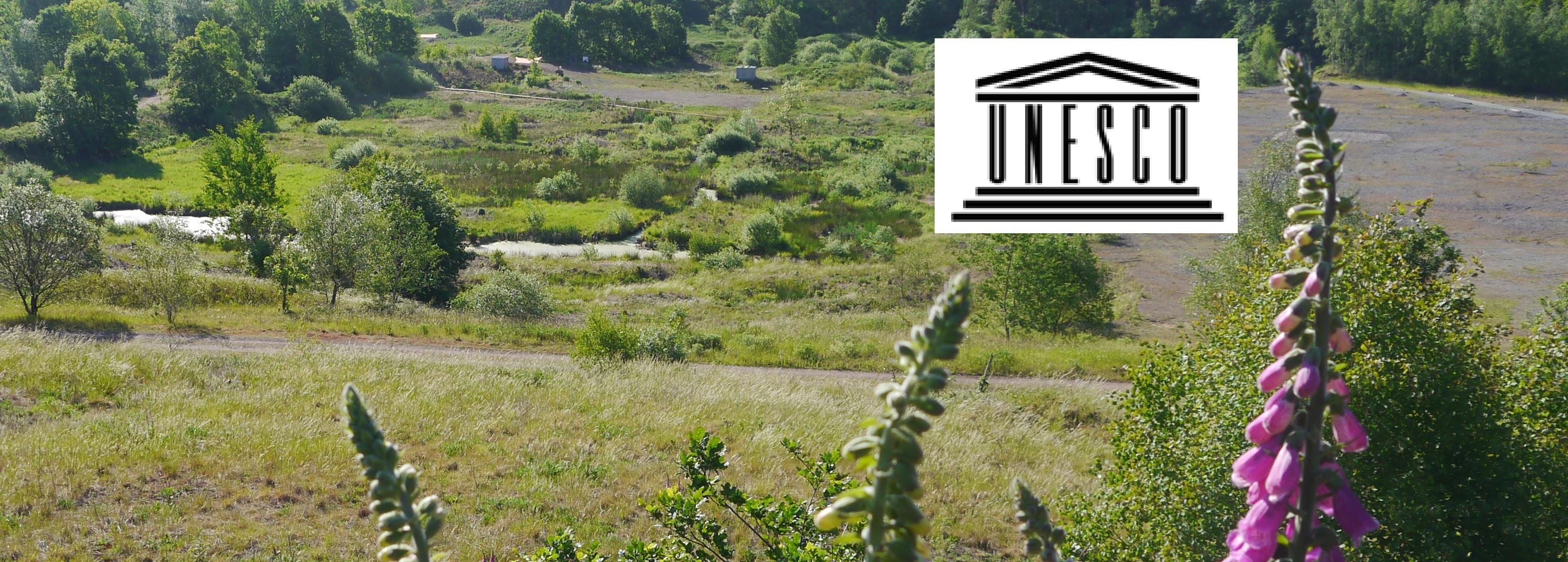 Themenfhrung-UNESCO